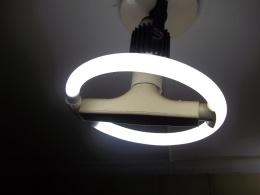 Lâmpada Fluorescente Circular.