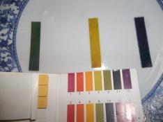 Medindo os pHs.