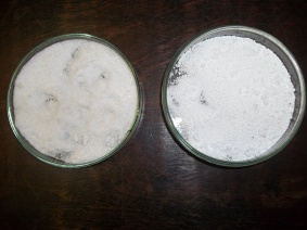Desidratação de Sulfato de Magnésio.