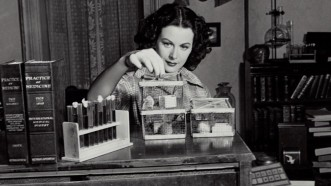 Hedy Lamarr, Atriz e Cientista