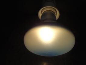 Lâmpada Alemã NARVA, de Luz Branca Azulada. Para Crescimento de Plantas. Acesa. Emite Luz Branca e um Pouco de Azul e UVA.