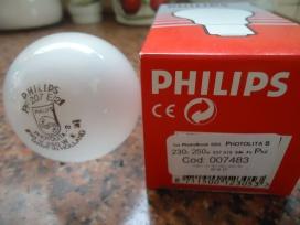 Lâmpada para Fotografia, Philips Photolita-S, 250 W, 230 V